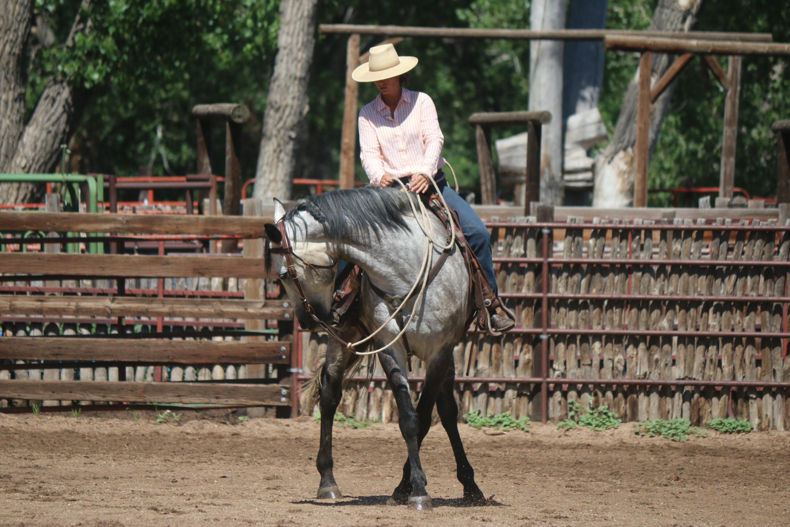 Horsemanshop-EN